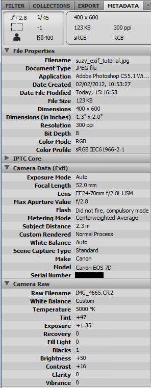 EXIF data displayed in Adobe Bridge